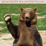 Здравствуйте жители россии